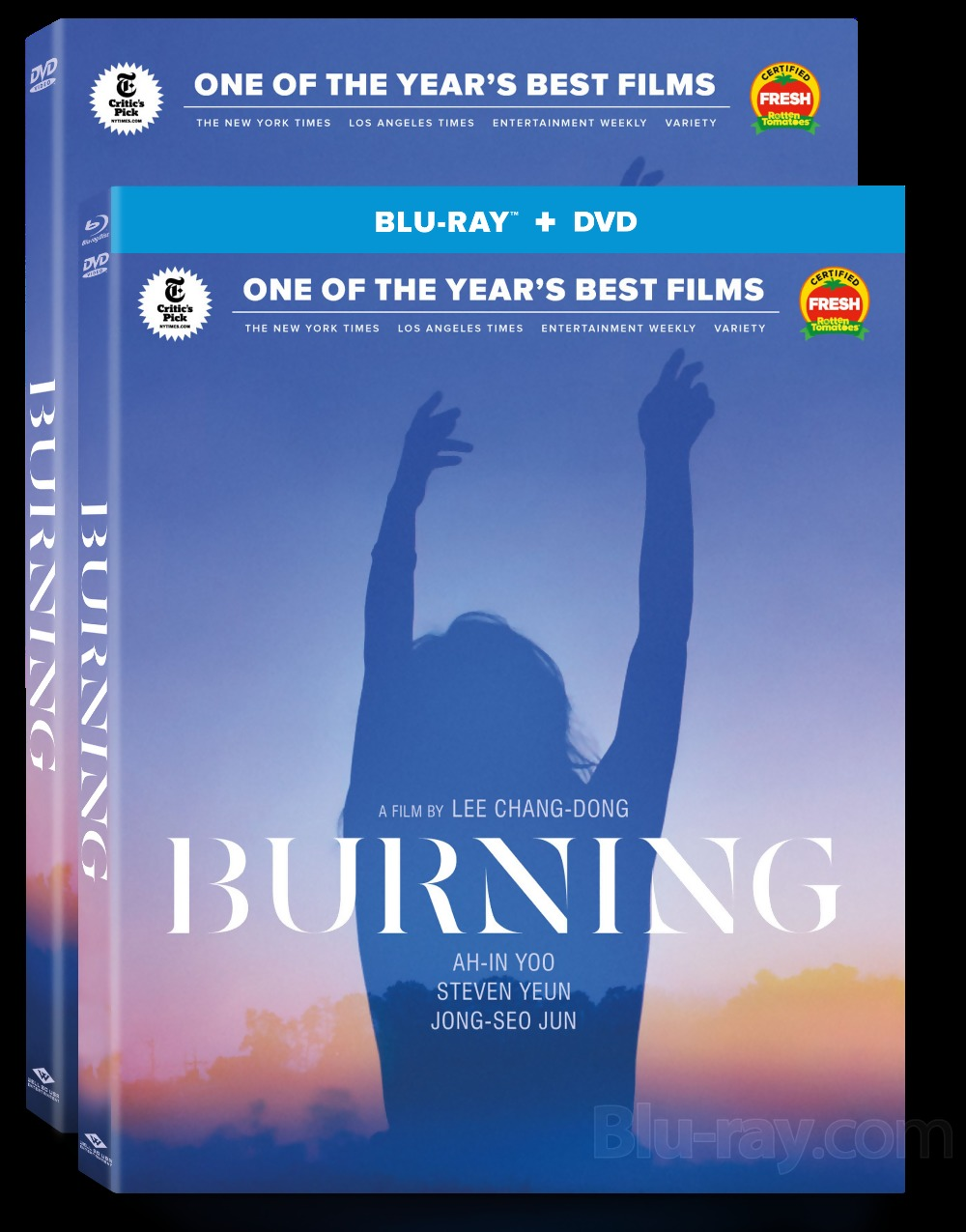 Well Go USA: Lee Chang-dong's Burning Heading to Blu-ray